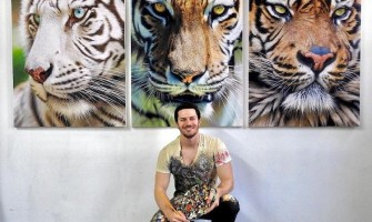 Canadian Nick Sider hyper-realistic animal paintings